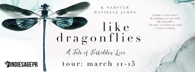 LikeDragonflies_Tour.jpg